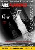«Aire Flamenco» в «Доме актера»