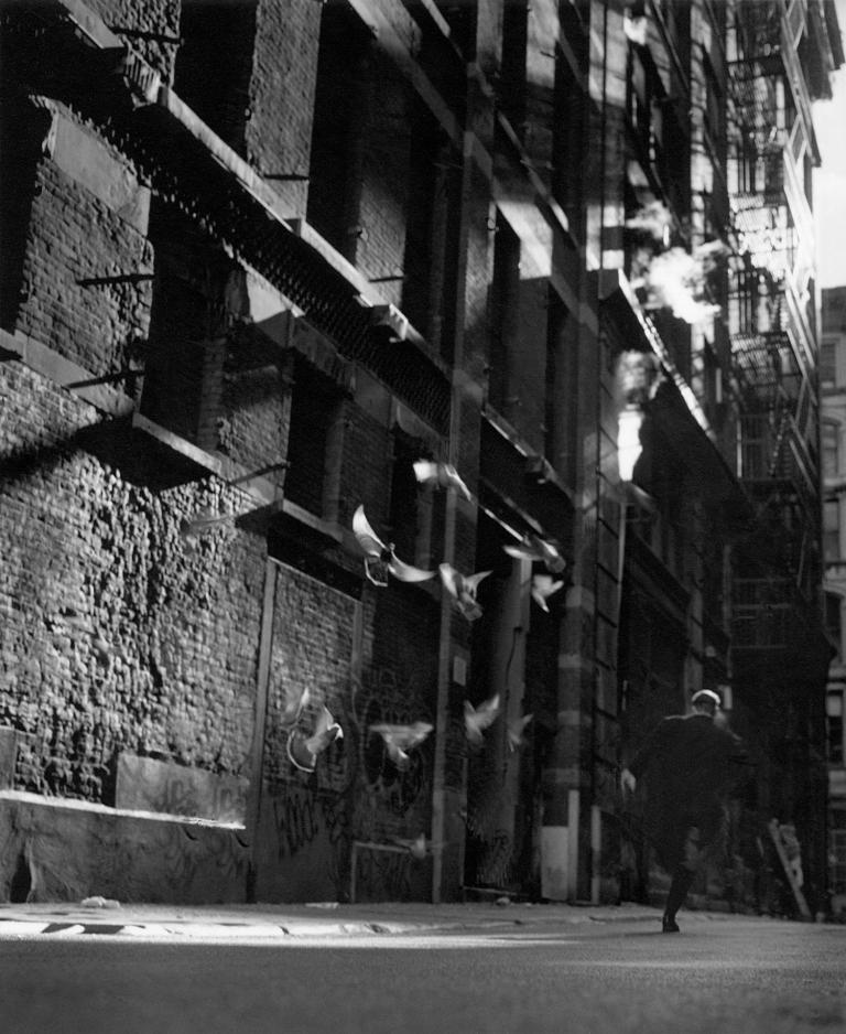 Выставка Джейсона Лангера «Книга ночи»