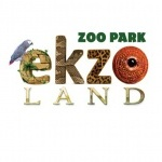 Зоопарк «Ekzoland»