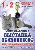Международная выставка кошек @ТРЦ Приозерный